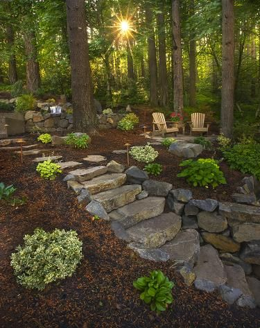 Great Idea To Incorporate Stones As Part Of The Floor Wooded Backyard Landscape Diy Backyard Landscaping Backyard Garden