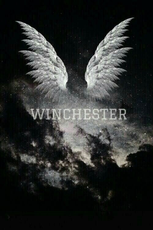 Thought It Said Wingchester