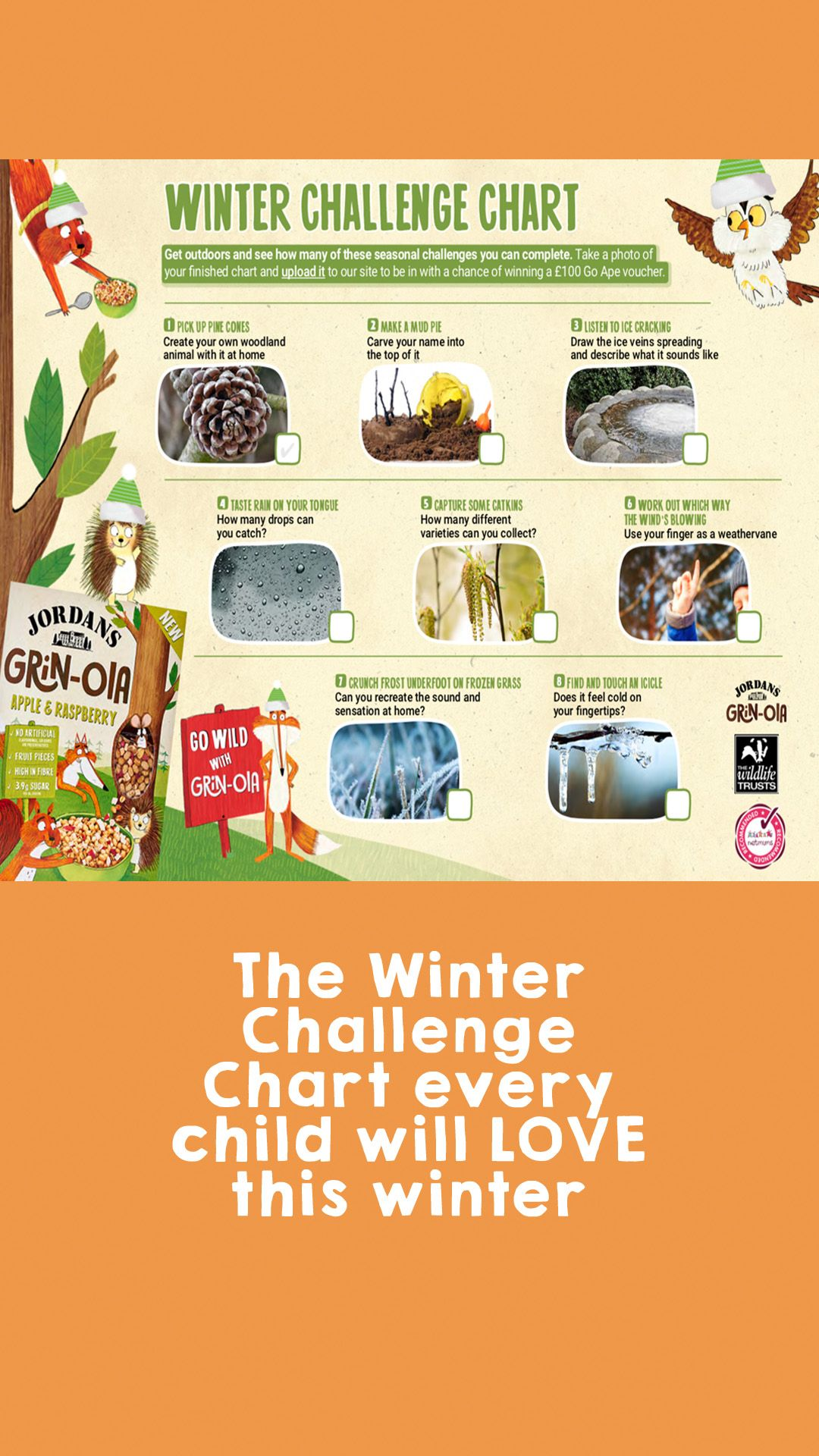 The Winter Challenge Chart Every Child Will Love This