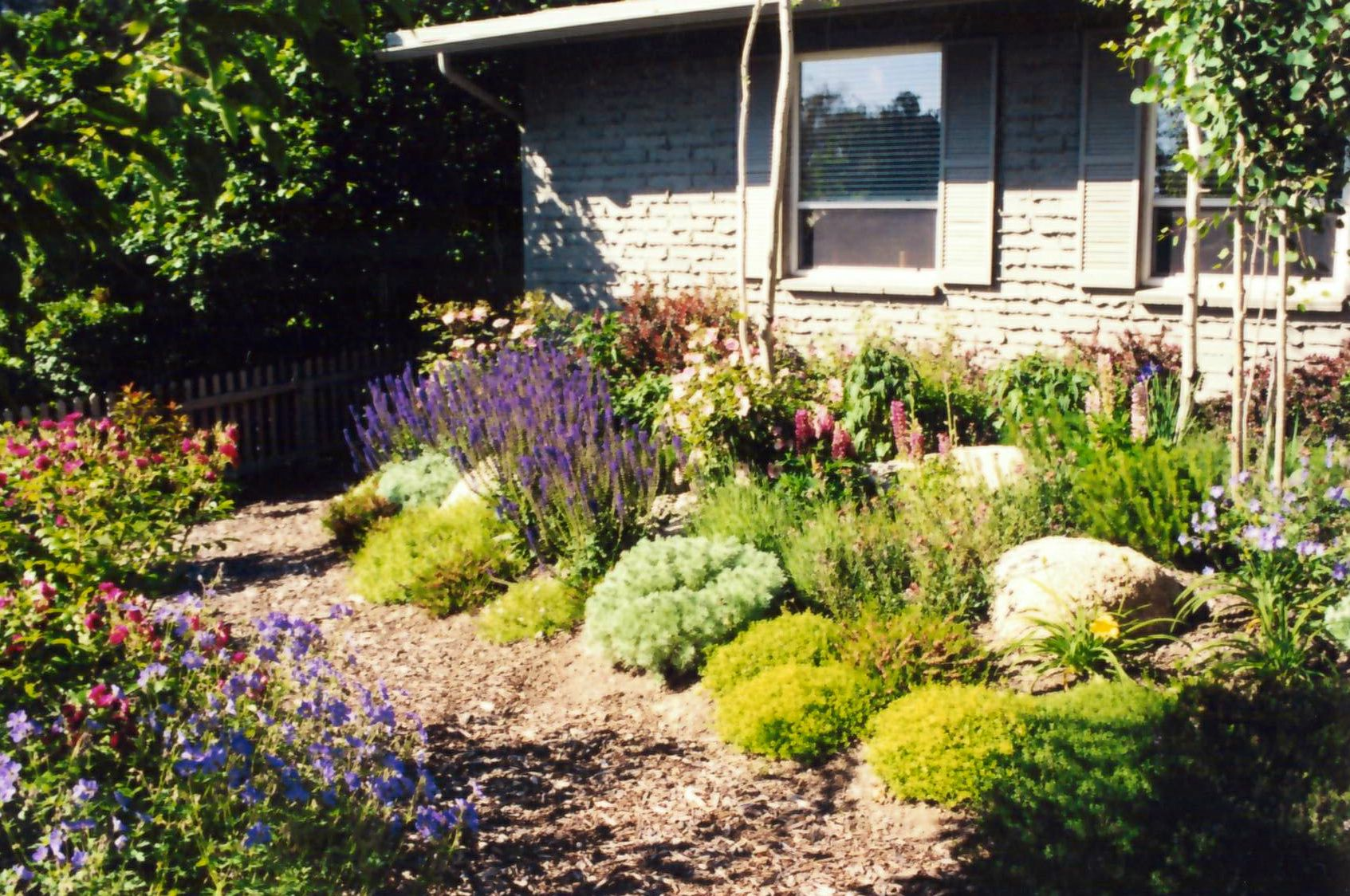 brenda broughton garden design simple cottage style low water use front garden landscape design - Garden Design Cottage Style