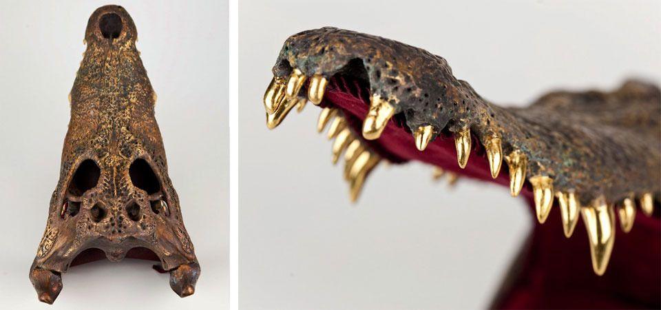 Gold And Bone Gold Grillz Hair With Flair Diamond Teeth