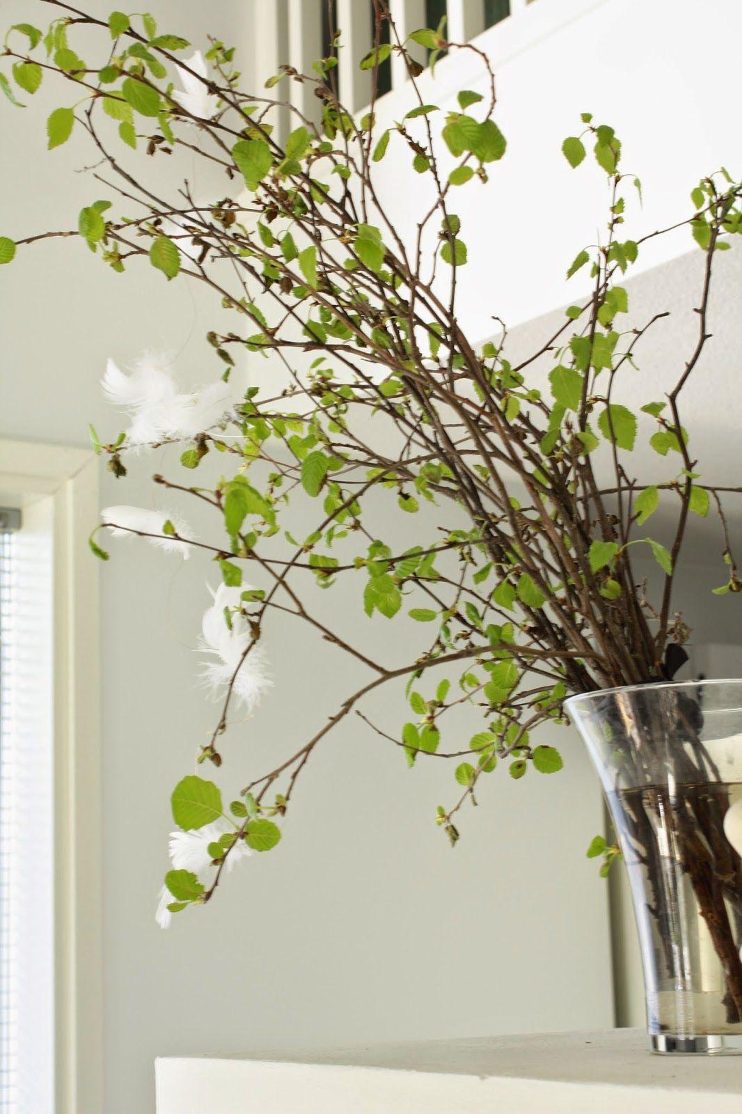 Spring decor- koivussa on hiirenkorvat