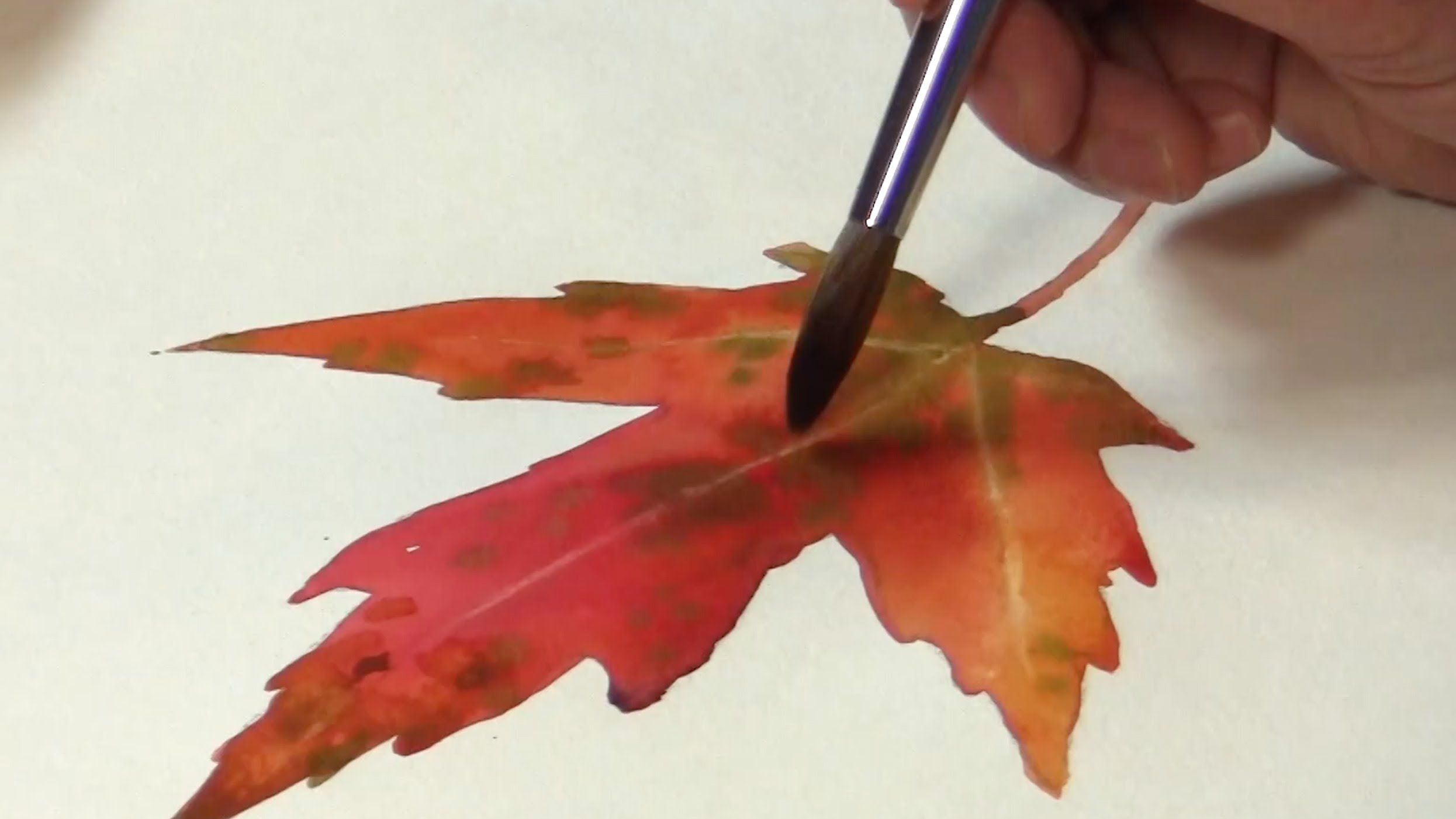 Painting A Autumn Leaf In Watercolor With Wet In Wet Watercolor