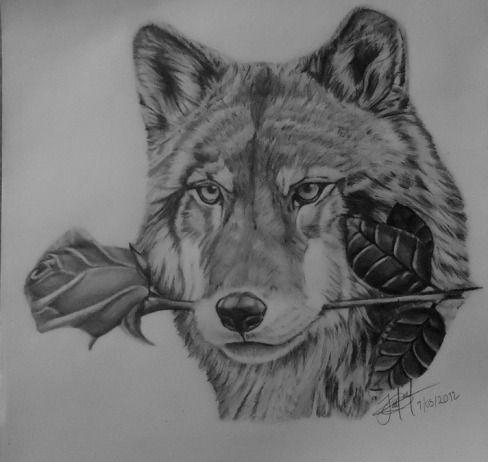 Wolf Drawing Kreslen T Lobos Dibujo Y Dibujar
