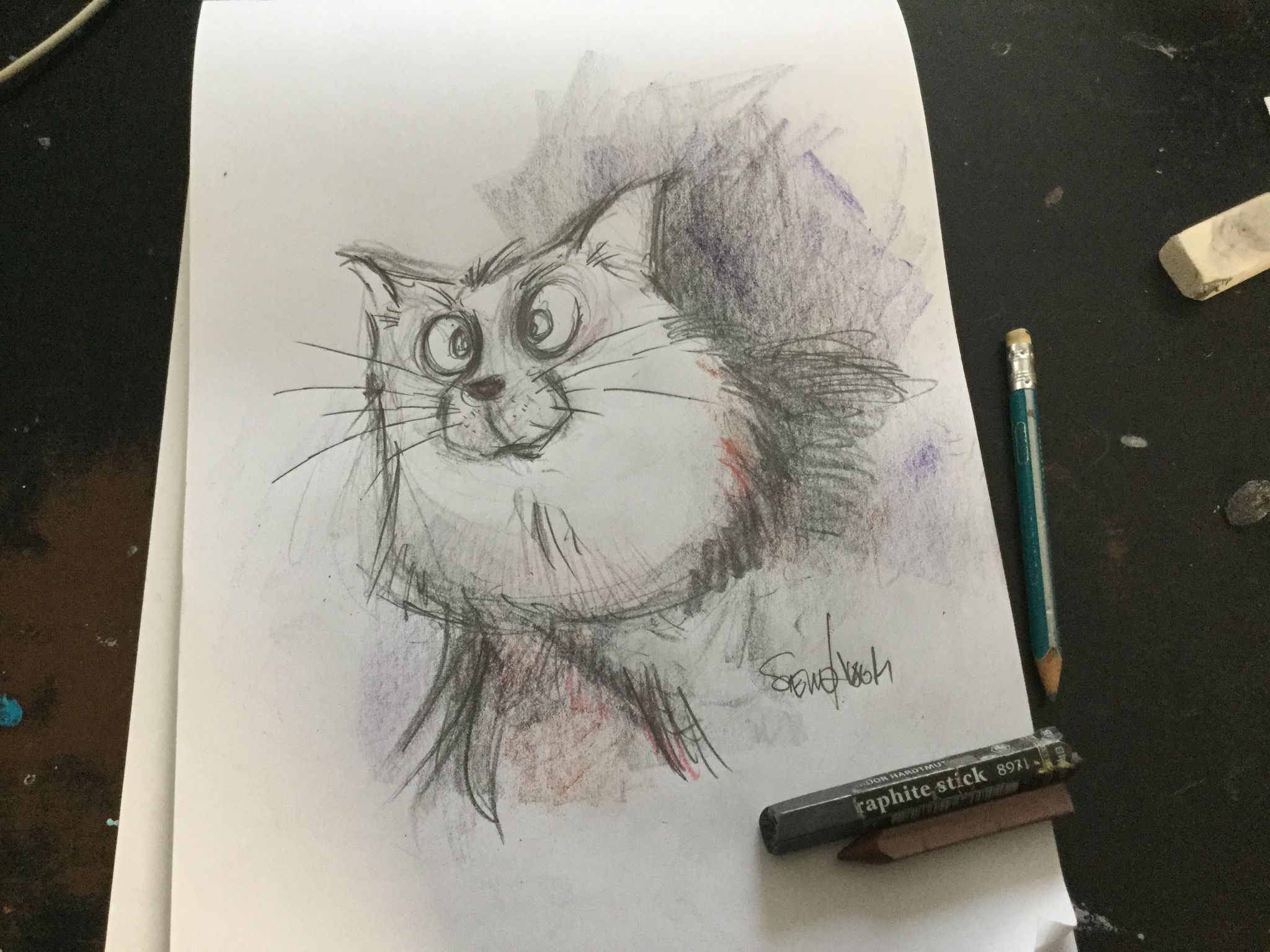 Miauw ...
