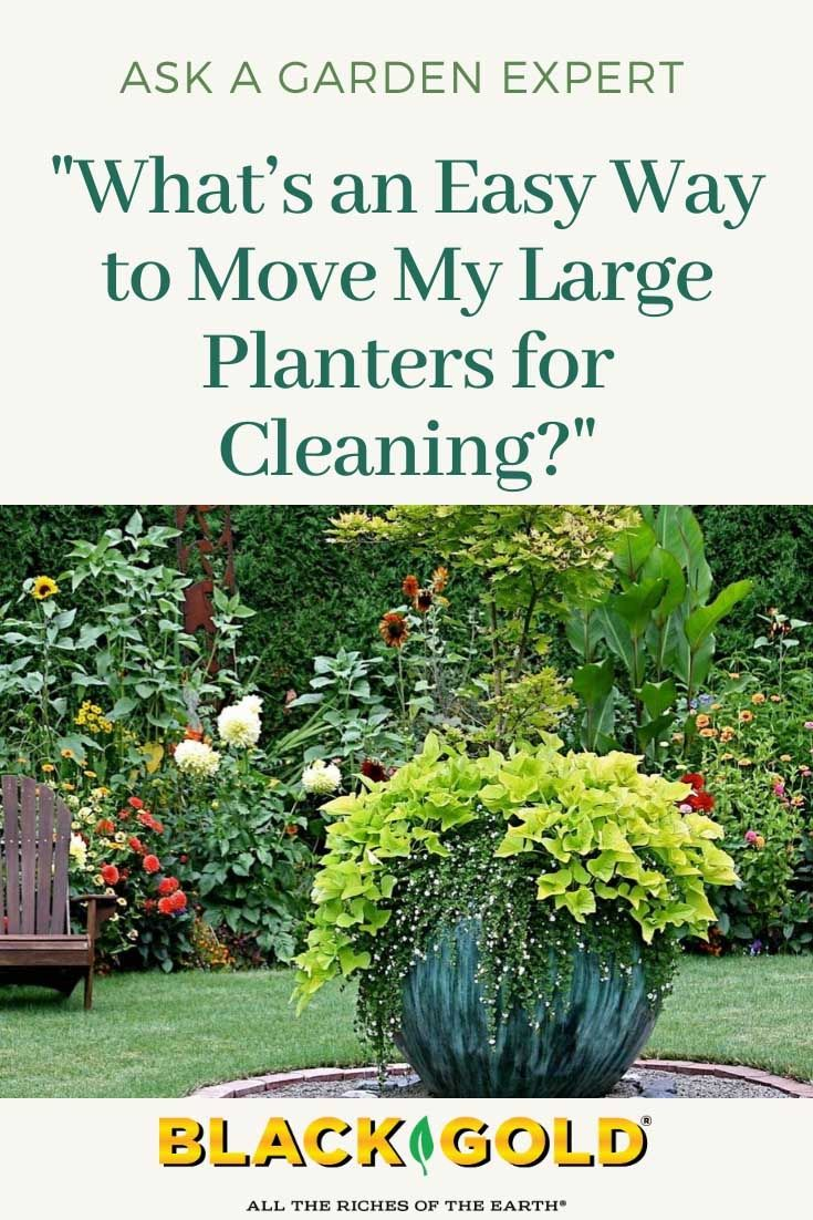 Whats an Easy Way to Move My Large Planters I have some very heavy and large planters that need to be sterilized I am sure or cleaned before I plant new flowers next seas...