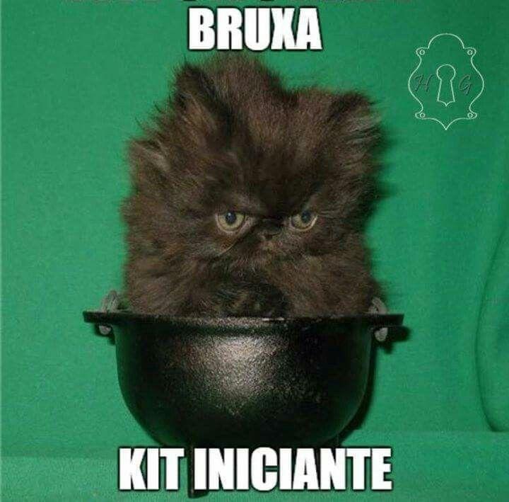 Um gatinho preto pra desfazer toda negatividade . #blessedbe