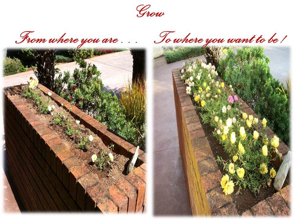 Grow ! From where you are...to where you want to be...and beyond !