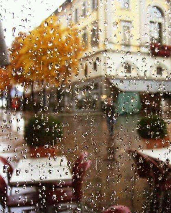 Rainy Day Photography: Best 25+ Rainy Weather Ideas On Pinterest