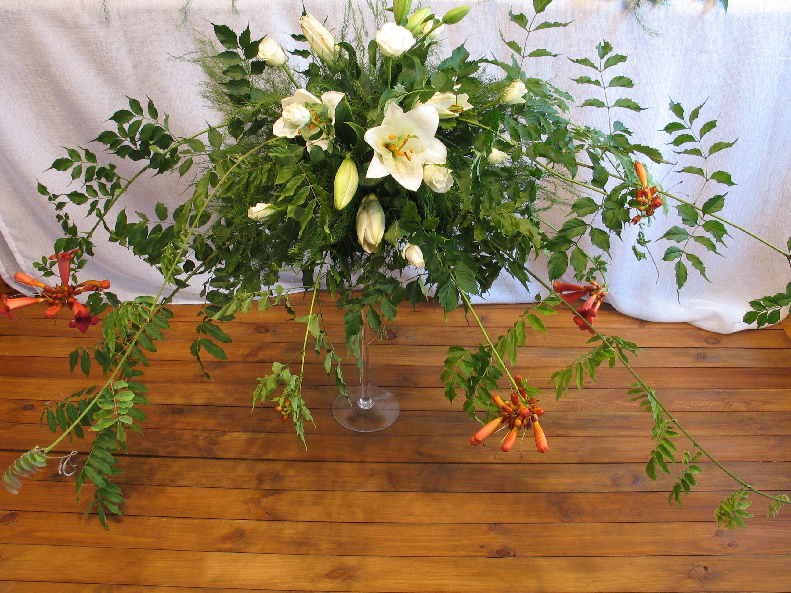 Wystroj Sali Weselnej Plants