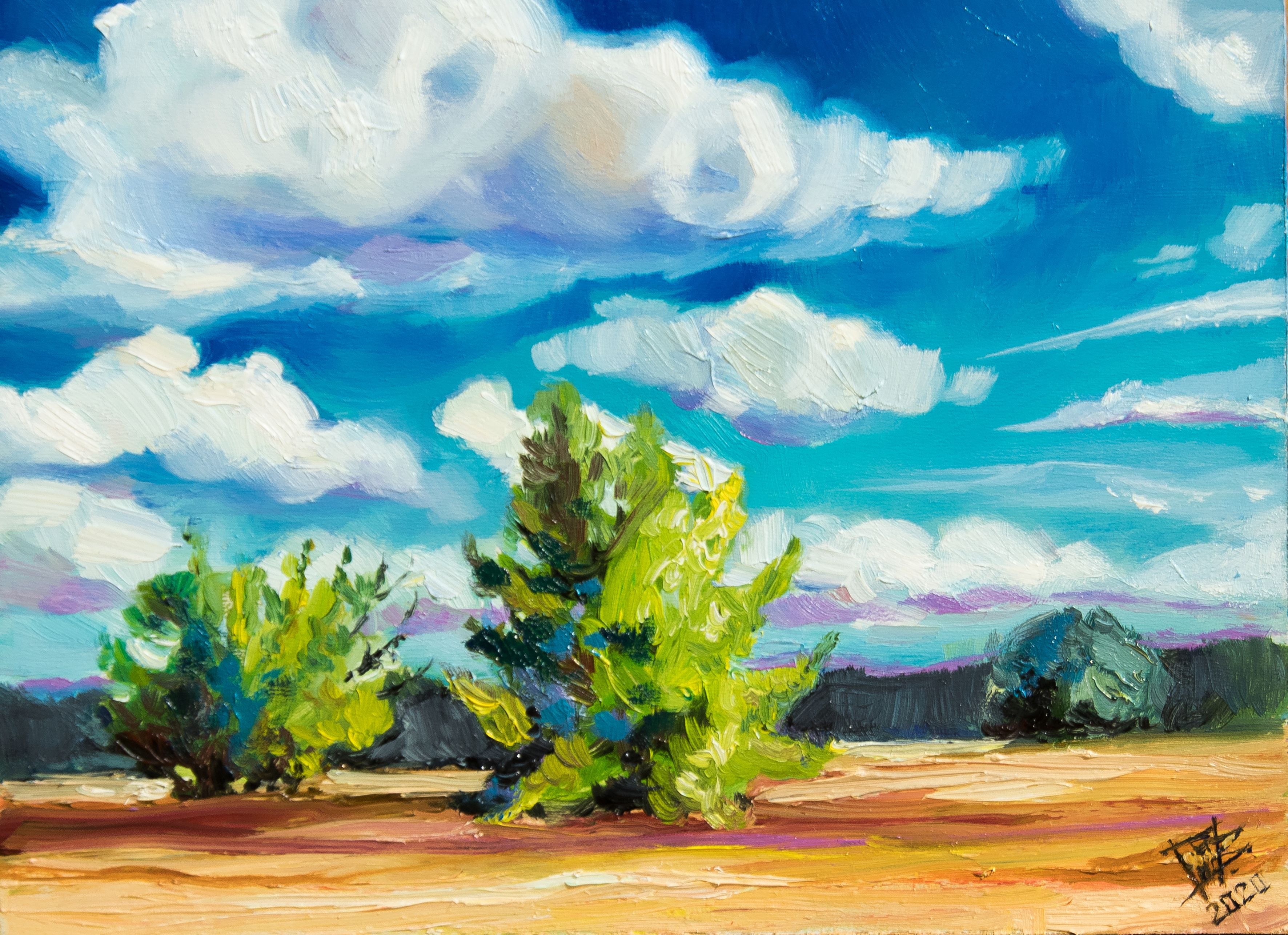 Bright Field Landscape Dramatic Clouds Painting Original