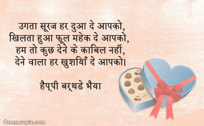 Birthday status for brother in hindi attitude Birthday