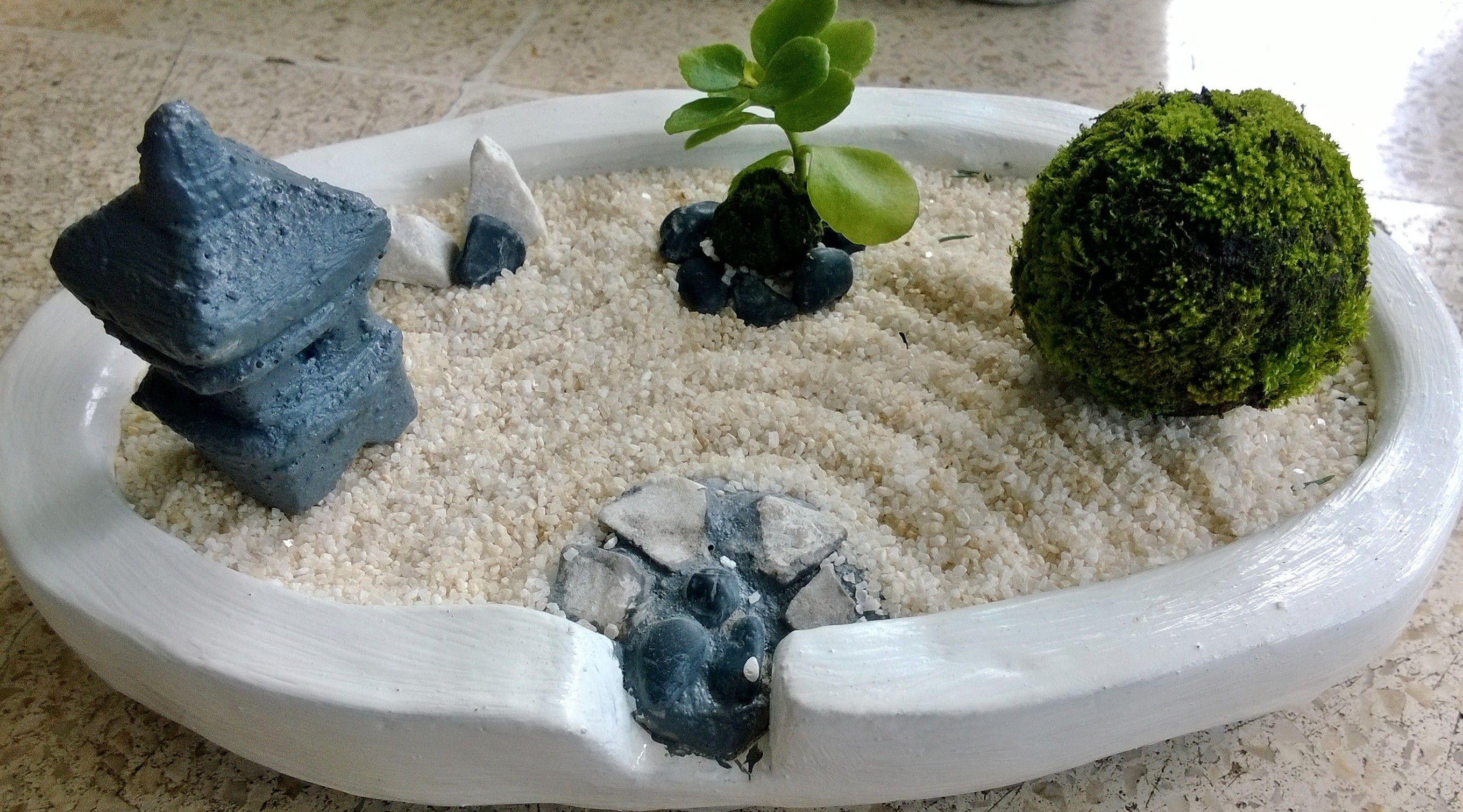 moss ball succulent in mini zen garden mini zen garden. Black Bedroom Furniture Sets. Home Design Ideas