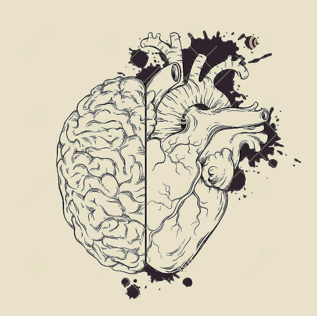 La memoria è una fabbrica che lavora giorno e notte, sarebbe stato  l'incipit. Immagazzina, classifica, riproduce. Inventa. Prende un nome o un  fatto e lo seppellisce chissà dove, un episodio lo costruisce di sana pianta,  magari appoggiandosi a qualcosa che è successo davvero, per cui non di rado  i ricordi inventati risultano piú vividi e credibili di quelli reali, che si  presentano monchi, o con la messa a fuoco difettosa. La memoria,spesso, è  una dannazione.Tira fuori episodi imbar #magariungiorno