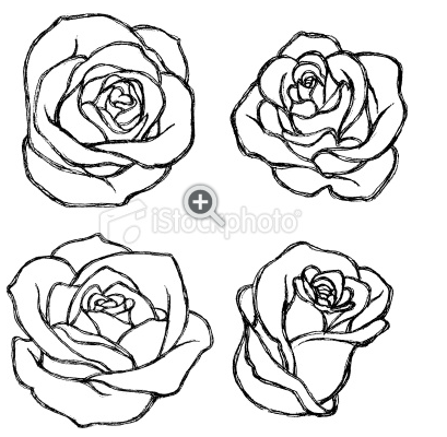 Pin By Pearl Crytales On Flowers And Roses Roses Drawing Flower Drawing Rose Outline Drawing