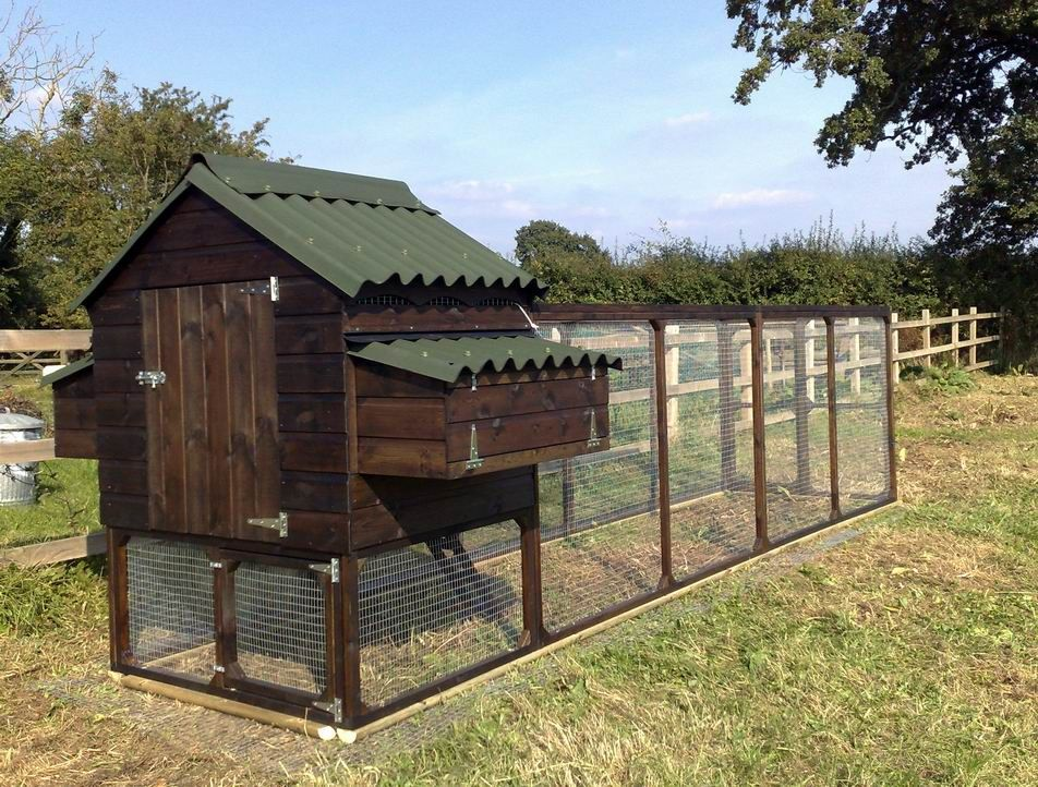 nicely laid out chicken run with hen house deep paint