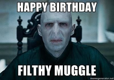 For My Potterhead Friends And Family Lord Voldemort Meme Harry Potter
