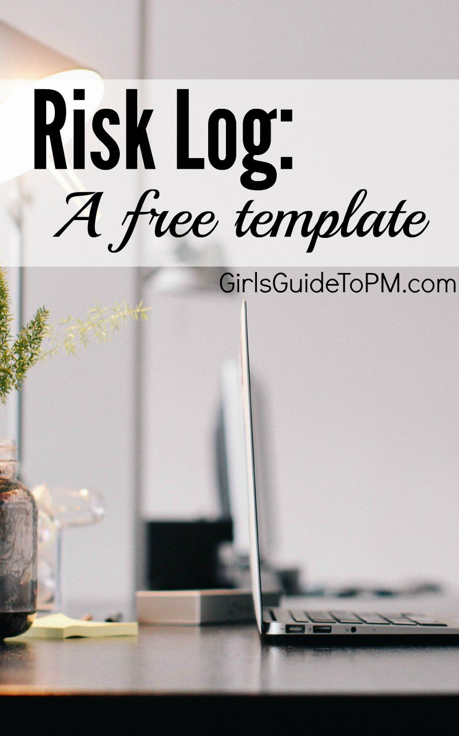 Free Template Project Risk Log Pinterest Project Management
