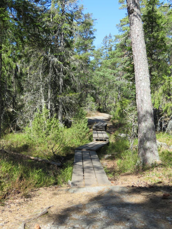 stockholm trail