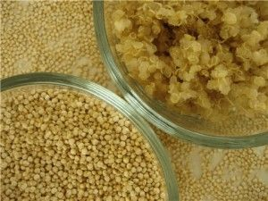 Quinoa contains more protein than any other grain and is cholesterol free, gluten free, and easy to digest. High in calcium and iron making this grain perfect for endurance athletes breakfast, lunch or dinner.