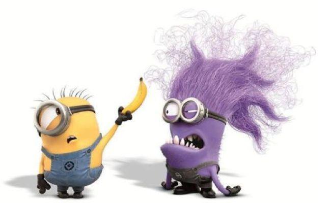 despicable me minion costume . purple minion graphic .  sc 1 st  Pinterest & despicable me minion costume . purple minion graphic . | MINIONS ...