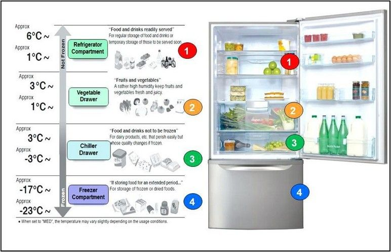 What Should Refrigerator And Freezer Temperatures Be Design Innovation Refrigerator Temperature Best Refrigerator Refrigerator