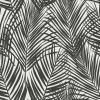 Unbranded Fifi Black Palm Frond Paper Strippable Wallpaper (Covers 56.4 sq. ft.)-DD139008 - The Home Depot