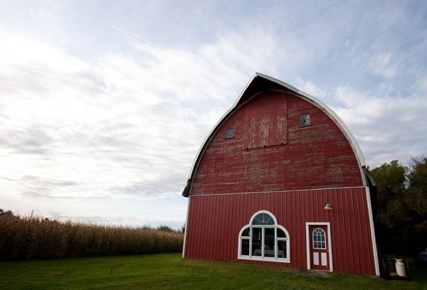 Roseland Williams Apple Orchard in roseland, mn # ...