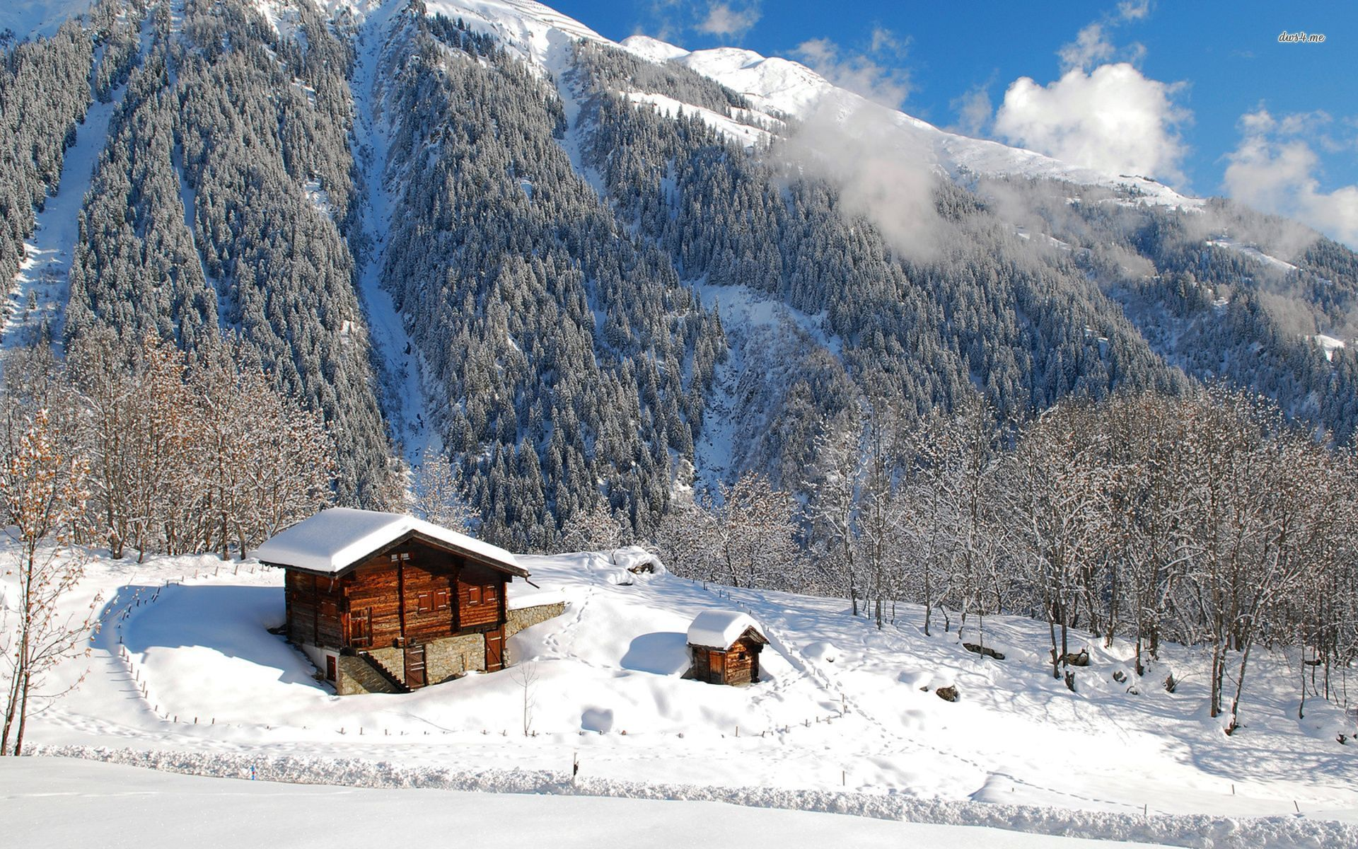Residential cabin in mountains... Wooden cabins
