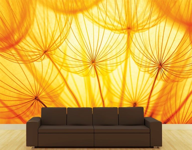 Fototapete Pusteblume im Sonnenlicht
