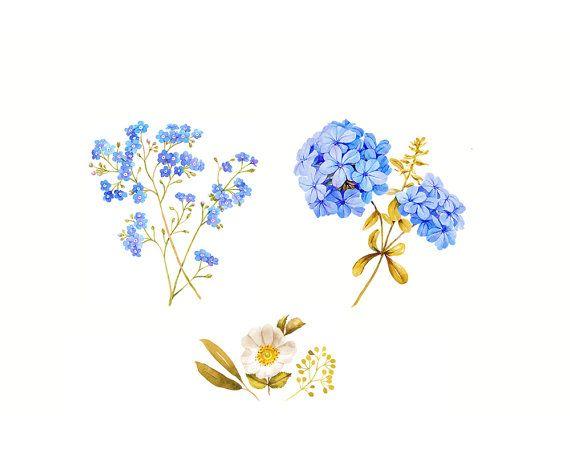 32+ Watercolor flower clipart blue ideas