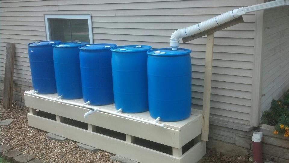 rainwater collection system survivalist forum