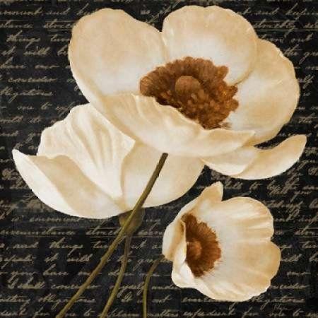 Evening Bloom I Canvas Art - Vivien Rhyan (24 x 24)