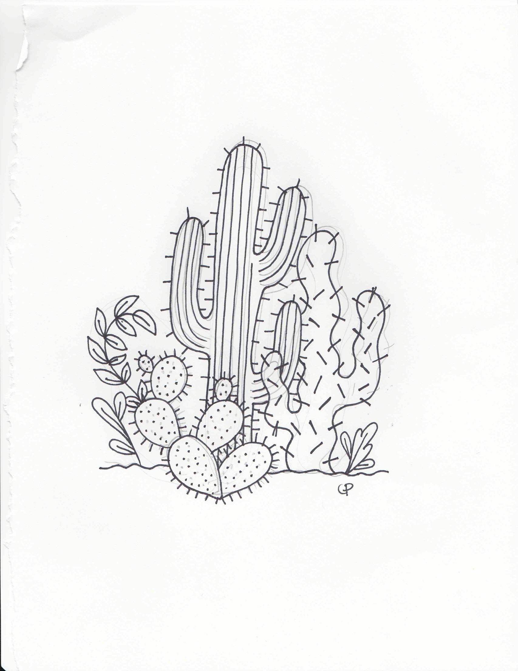 Photo of Cactus doodle