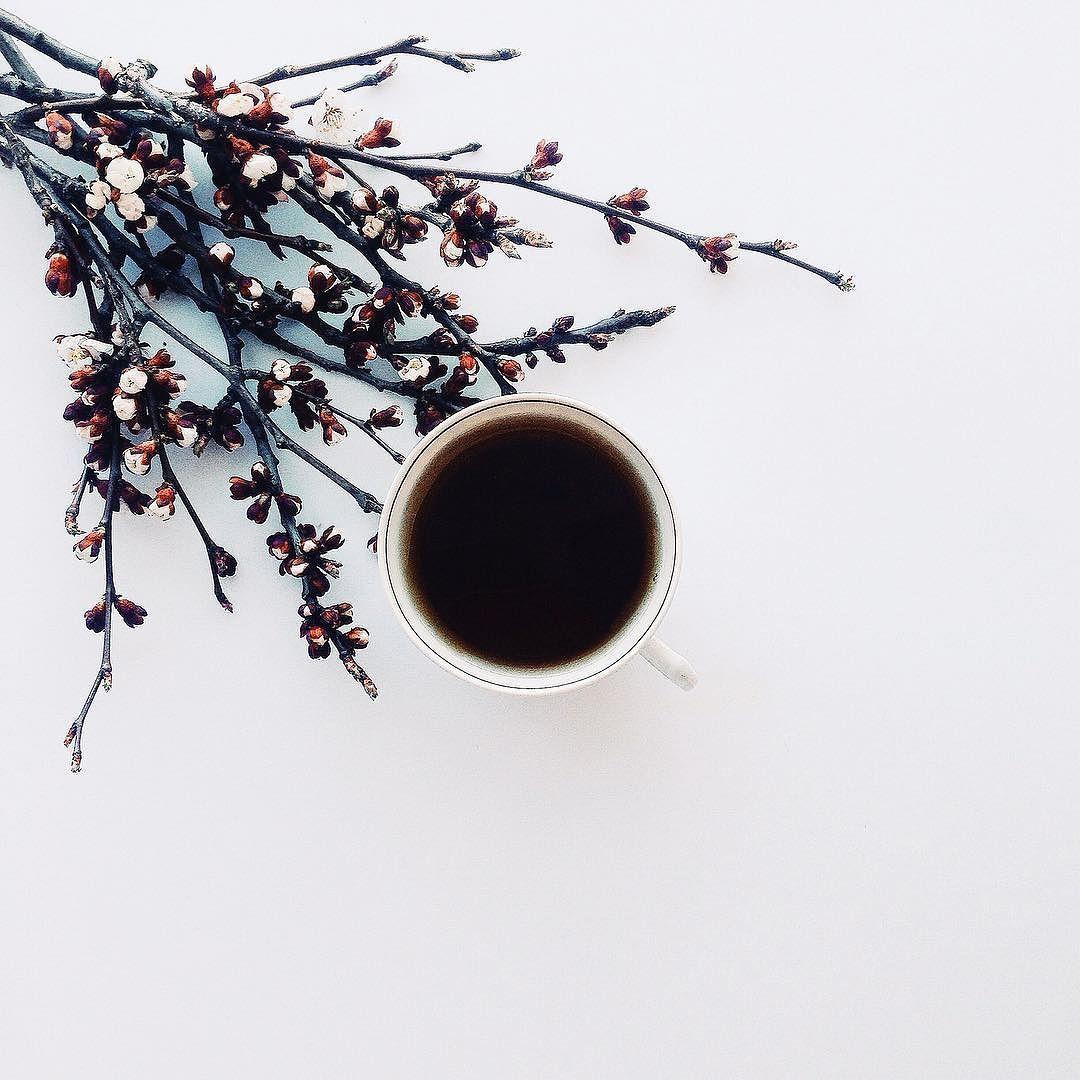 Good morning! by annaremarchuk