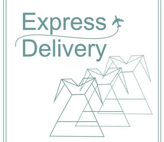 Express shipping additional cost link