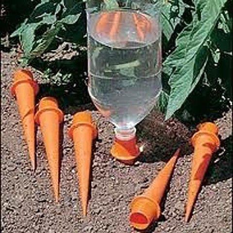 полив через пластиковые бутылки в открытом грунте