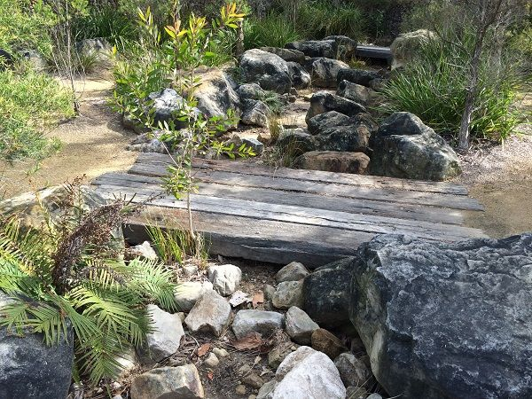 native australian garden design ideas