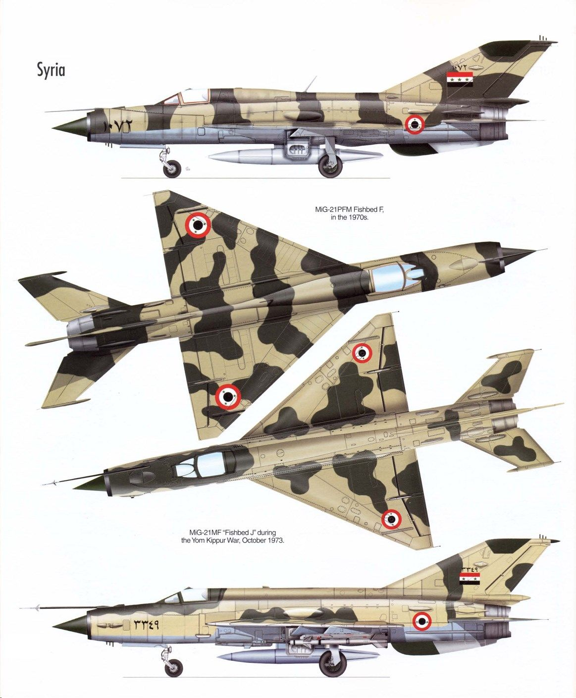 During The Openings Of The 1967 Six Day War The Israeli Air Force Struck
