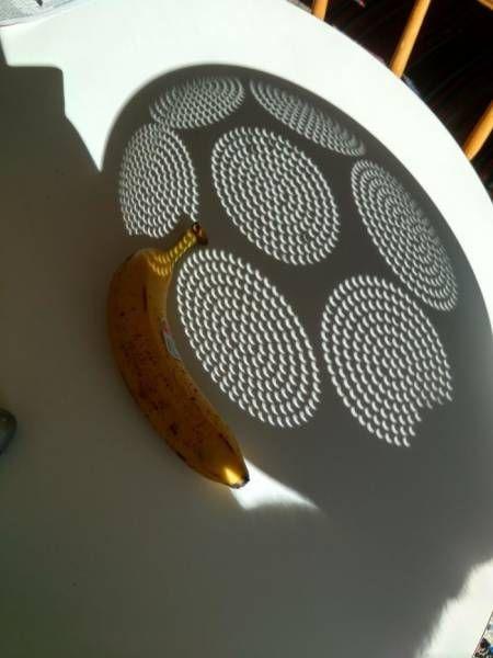Solar Eclipse Alternative Process eclipse camera obscura