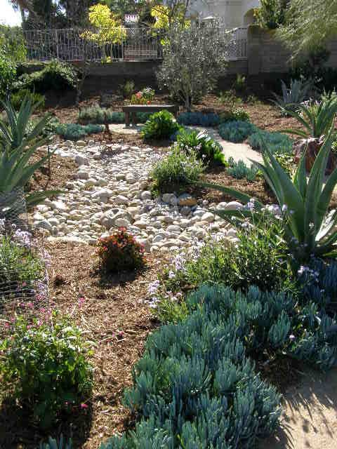 Dry Yard Landscaping | Dry riverbed landscaping, Water ...