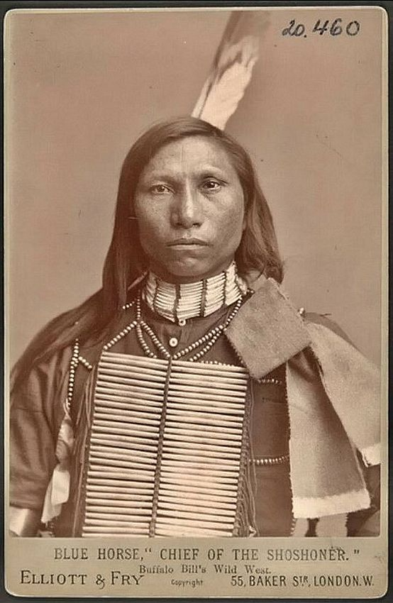 Blue Horse - Shoshone chief