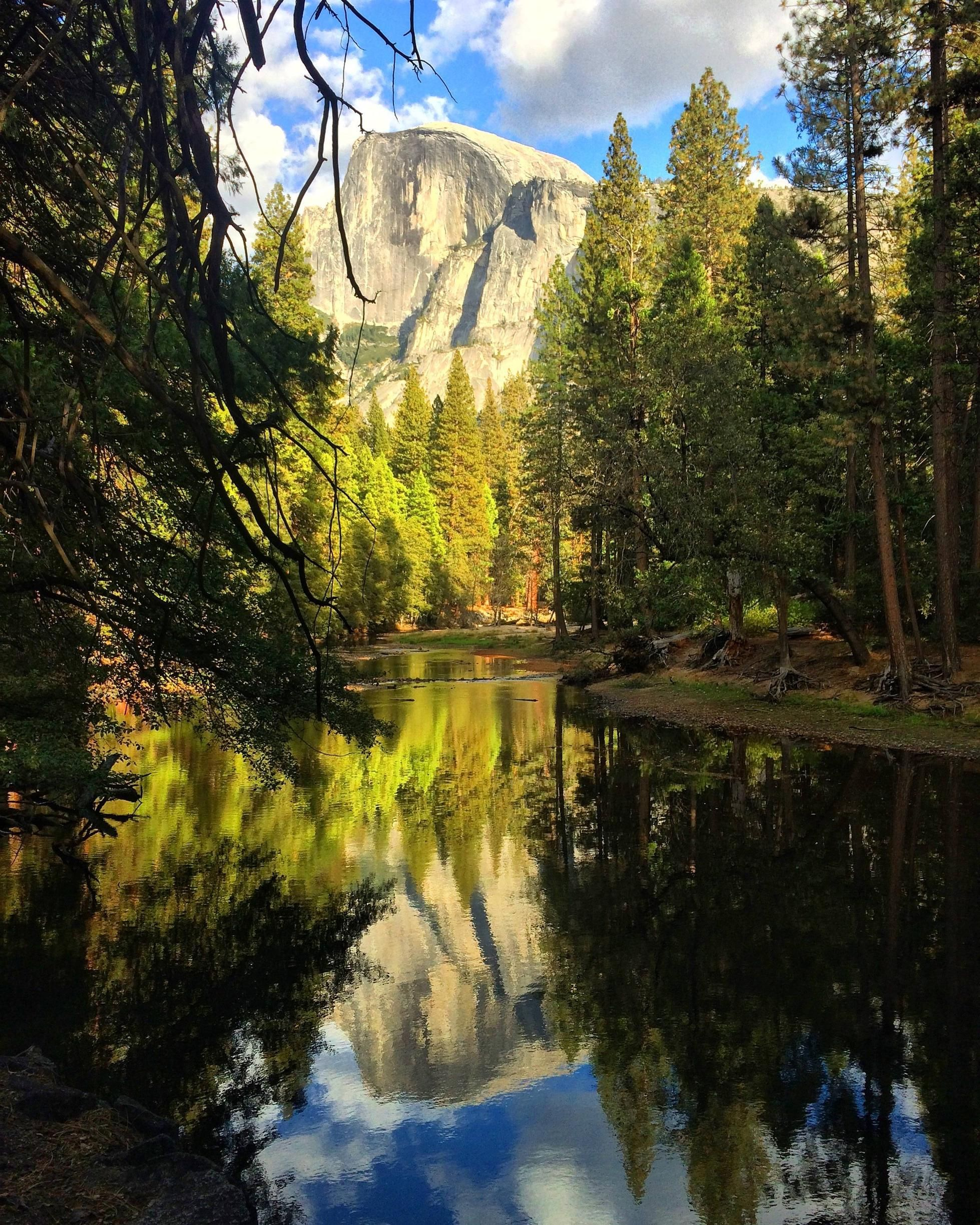Half Dome and her reflection Yosemite Valley CA [2448x3060]