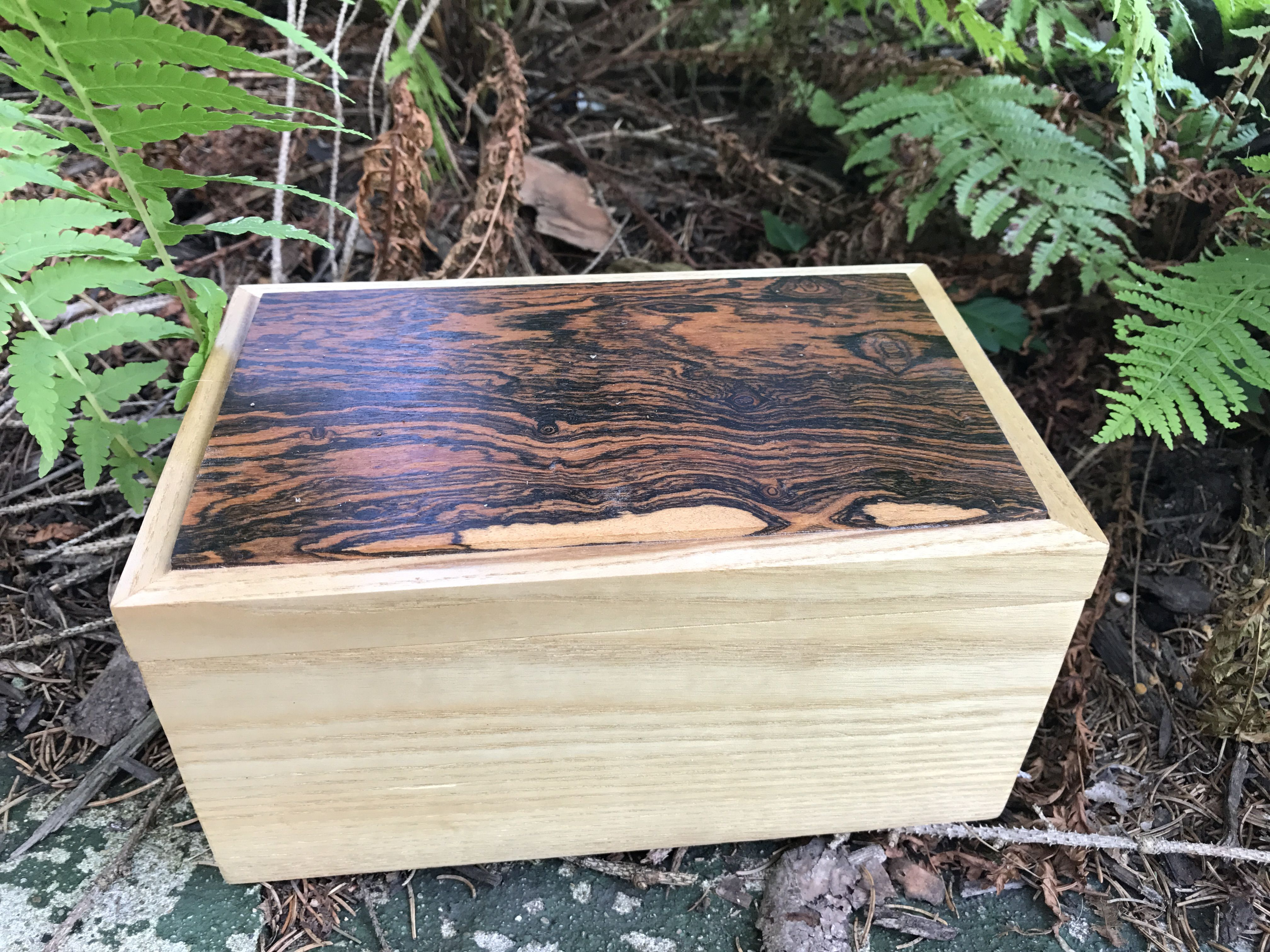 Tea Box With Cocobolo Lid Boxes Pinterest Fine Woodworking