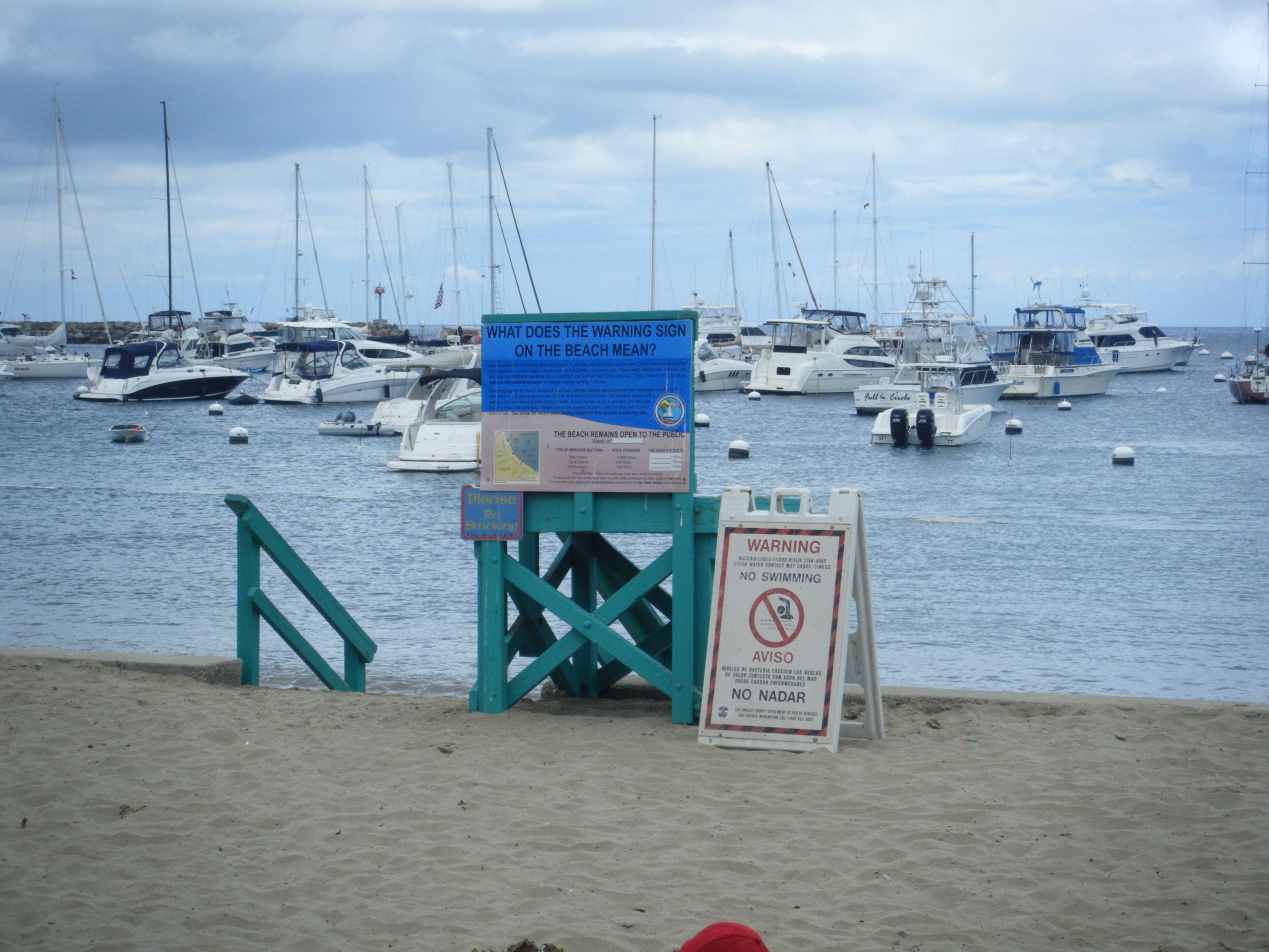 The Shoreline At Catalina Island Dream Vacations Island Vacation