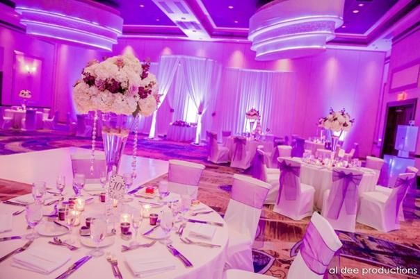 Wedding reception venues in orlando fl the knot future wedding wedding reception venues in orlando fl the knot junglespirit Images