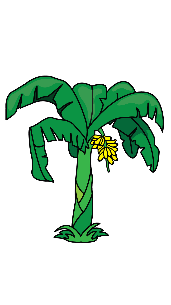 Another Tutorial In Flowers And Plants Category Is A Banana Tree Http Drawingmanuals Com Manual How To Draw A Banana Tree Drawing Flower Drawing Banana Tree