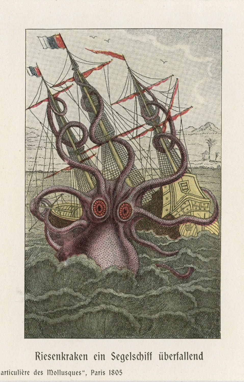 Antique Kraken Octopus Squid Print Giant Sea Monster Mythological Marine Life C 1900 Matted 11x14 By Antiqueprintboutique On Etsy