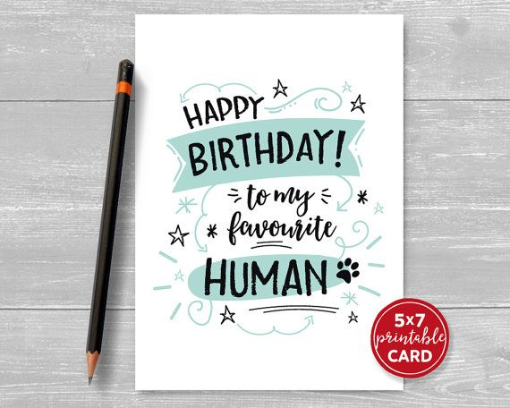 Printable Birthday Card from the cat or dog - Happy ...