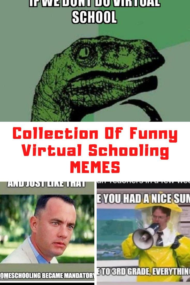 Collection Of Funny Virtual School Memes Guide 4 Moms in